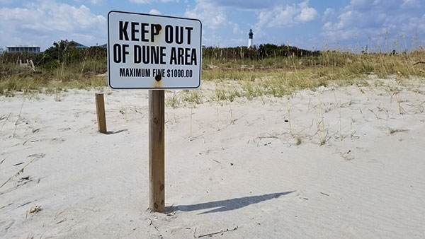 Thanks to Irma, there is much less dune area to be fined in.