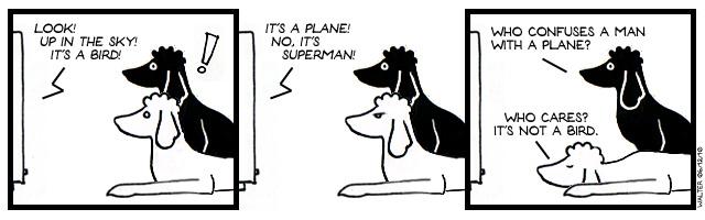 Super-Poodle