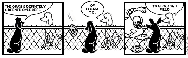 Foul: Un-poodle-like Conduct!