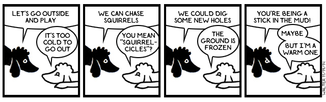 I told you poodles are smart